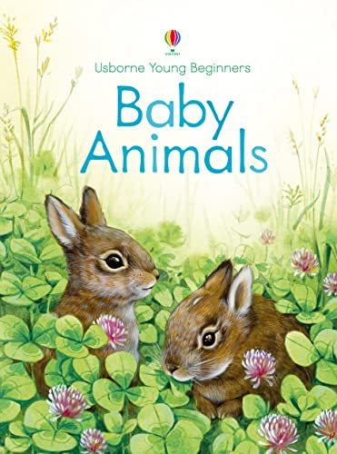 9781409581765: Baby Animals (Young Beginners)