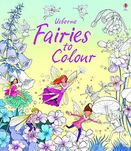 9781409582106: Fairies to Colour