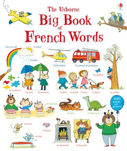 9781409582328: Big Book of French Words (Big Book of Words)