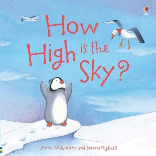 9781409583202: How High is the Sky? (Picture Books)
