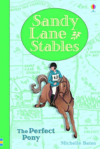 9781409590675: Sandy Lane Stables the Perfect Pony (Young Reading)