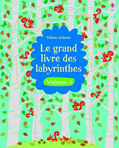 9781409595694: Le Grand Livre des Labyrinthes - Numero 3