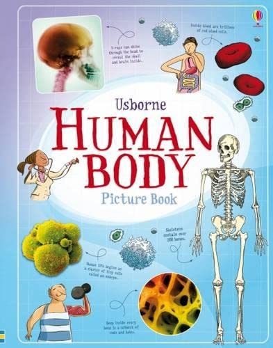 9781409599869: Human Body Picture Book