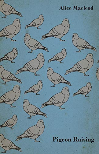 9781409711513: Pigeon Raising