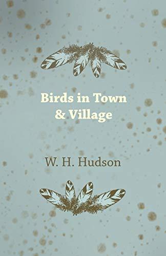 9781409785743: Birds in Town & Village