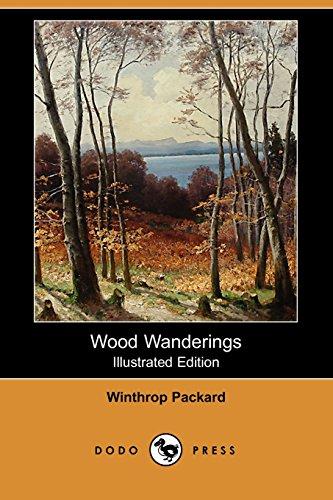 9781409913870: Wood Wanderings (Illustrated Edition) (Dodo Press)