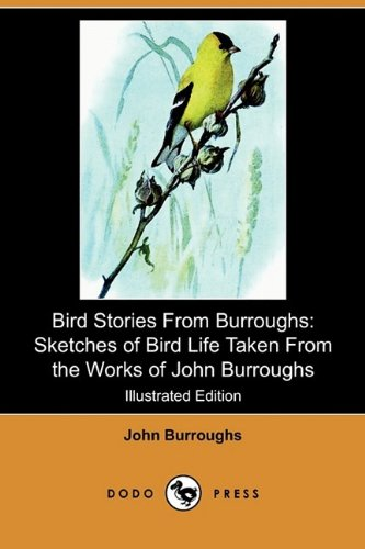 9781409980445: Bird Stories from Burroughs: Sketches of Bird Life Taken from the Works of John Burroughs (Illustrated Edition) (Dodo Press)