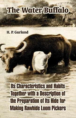 9781410220585: The Water Buffalo: Its Characteristics and Habits Together with a Description of the Preparation of Its Hide for Making Rawhide Loom Pickers