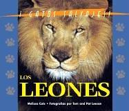 9781410300034: Gatos Salvajes Del Mundo (Wild Cats of the World) - El Leon (The Lion)