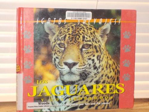 9781410300058: Gatos Salvajes Del Mundo (Wild Cats of the World) - El Juguar Y El Leopardo (The Jaguar and the Leopard)