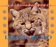 Gatos Salvajes (Wild Cats of North America): Jalma Barrett &