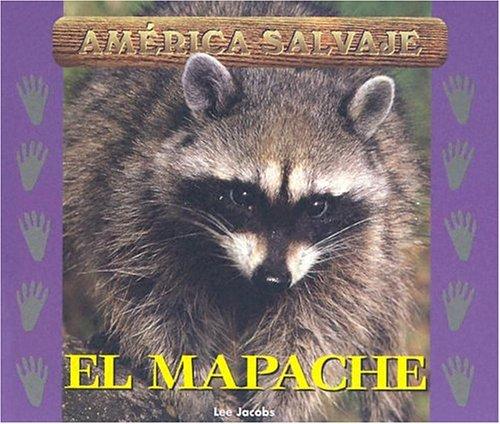 9781410302793: Salvajes (Wild) - El Mapache (Raccoon)