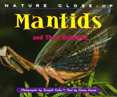 Mantids and their Relatives (Nature Close-Up): Elaine Pascoe