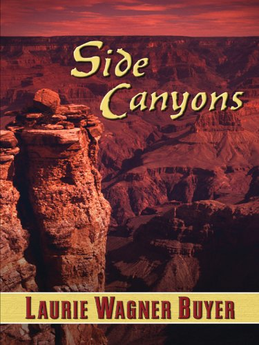 9781410402431: Side Canyons