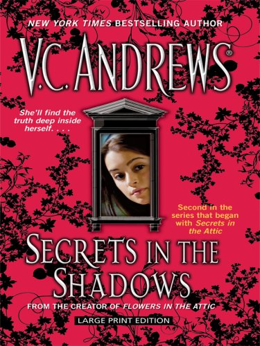9781410405722: Secrets in the Shadows (Secrets Series)