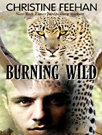 Burning Wild (Thorndike Romance): Christine Feehan