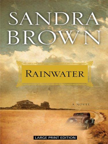 9781410421432: Rainwater (Thorndike Press Large Print Basic)