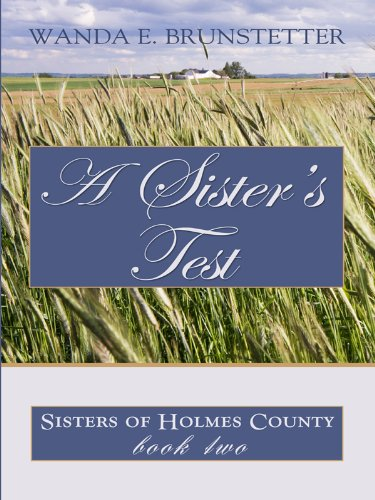 9781410422019: A Sister's Test (Thorndike Press Large Print Christian Romance Series: Sisters of Holmes County)