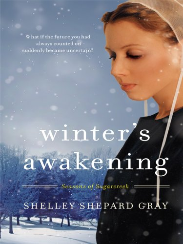 9781410427809: Winter's Awakening (Thorndike Christian Romance)