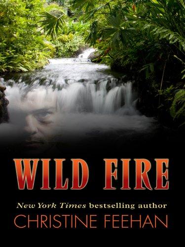 9781410430427: Wild Fire (Thorndike Press Large Print Romance Series)