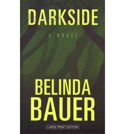 9781410439475: Darkside: [A Novel] (Wheeler Large Print Western)