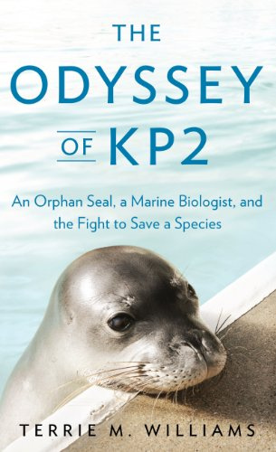 9781410452504: The Odyssey of KP2: An Orphan Seal, a Marine Biologist, and the Fight to Save a Species (Thorndike Press Large Print Popular and Narrative Nonfiction Series)