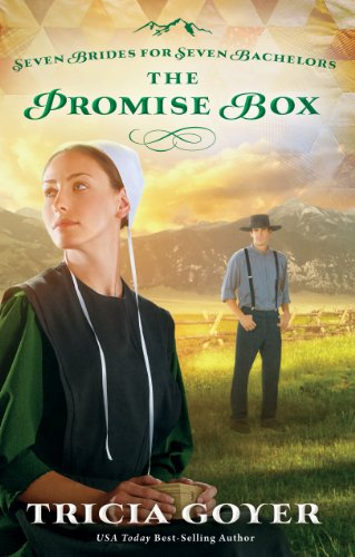 The Promise Box (Thorndike Press Large Print Christian Romance Series) (1410460754) by Goyer, Tricia