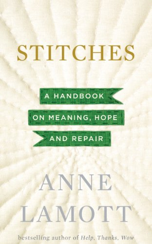 9781410463661: Stitches: A Handbook on Meaning, Hope, and Despair (Thorndike Press Large Print Core)