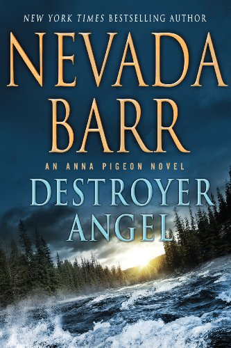 9781410466914: Destroyer Angel (Wheeler Large Print Book Series)