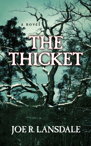9781410470782: The Thicket