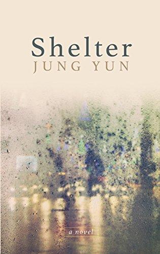 9781410491343: Shelter (Wheeler Large Print Book Series)