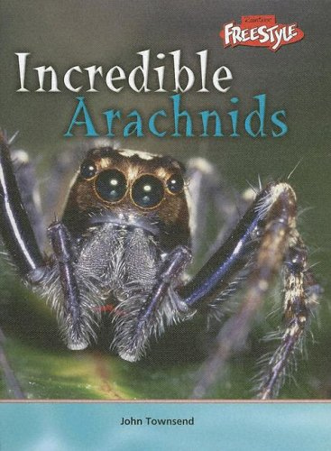 9781410905260: Incredible Arachnids (Incredible Creatures)