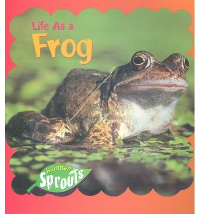 9781410906533: Life As a Frog
