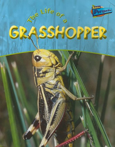 9781410909251: Life of a Grasshopper (Life Cycles)