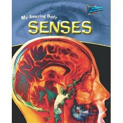 9781410909527: Senses (My Amazing Body)