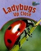 9781410915375: Ladybugs Up Close (MINIBEASTS UP CLOSE)