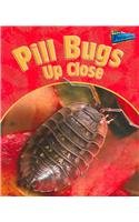 9781410915382: Pill Bugs Up Close (MINIBEASTS UP CLOSE)