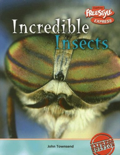 9781410917249: Incredible Insects (Incredible Creatures)