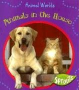 Animals in the House (Animal Worlds): Barraclough, Sue