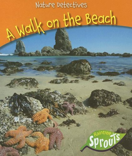 9781410922908: A Walk on the Beach (Nature Detectives)