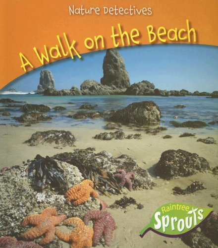 9781410922953: A Walk on the Beach (Nature Detectives)