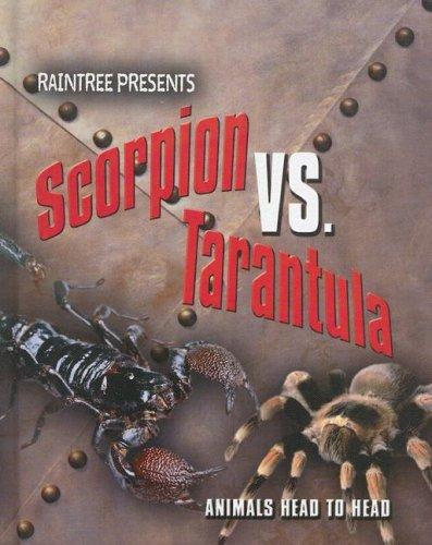 9781410923967: Scorpion Vs  Tarantula (Animals Head to Head