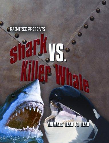 9781410923998: Shark vs. Killer Whale (Animals Head To Head)
