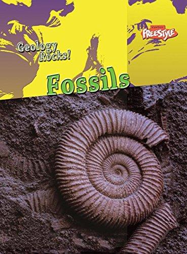 9781410927606: Fossils (Geology Rocks!)