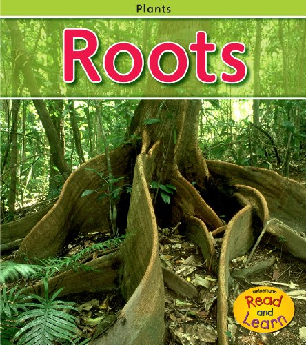 Roots (Plants): Whitehouse, Patricia
