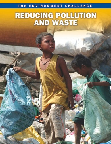 9781410943064: Reducing Pollution and Waste (The Environment Challenge)
