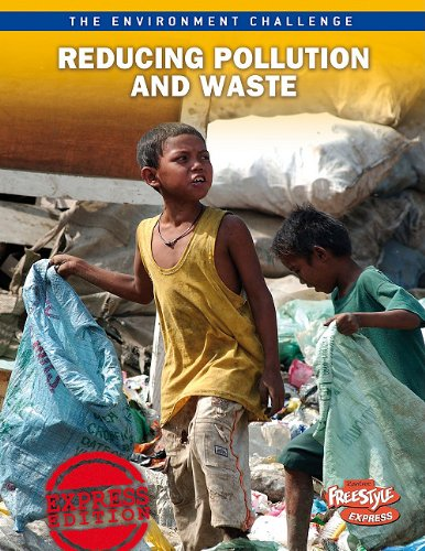 9781410943279: Reducing Pollution and Waste (The Environment Challenge)