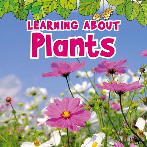 9781410954060: Learning About Plants (The Natural World)