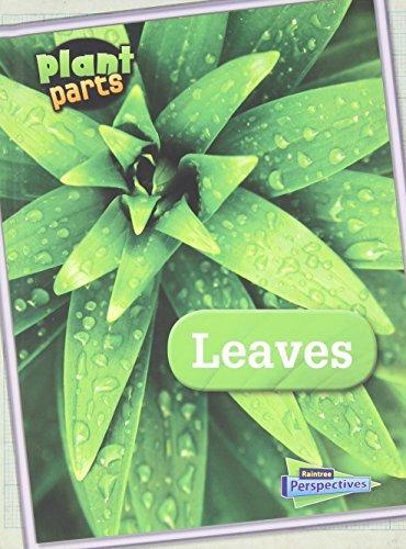 9781410954213: Leaves (Plant Parts)