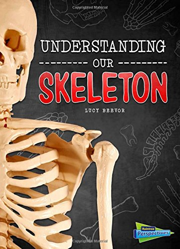 9781410985828: Understanding Our Skeleton (Brains, Body, Bones!)